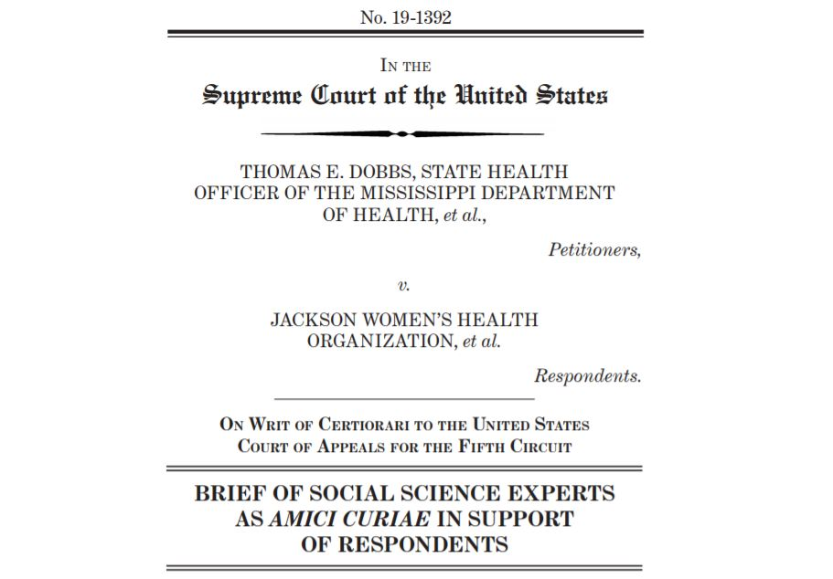 Image from the Dobbs v. Jackson Women's Health Organization amicus brief submitted by Social Science Experts